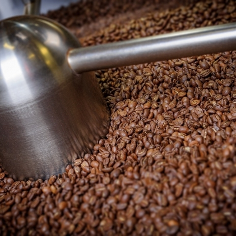 Mozzo®  Coffee